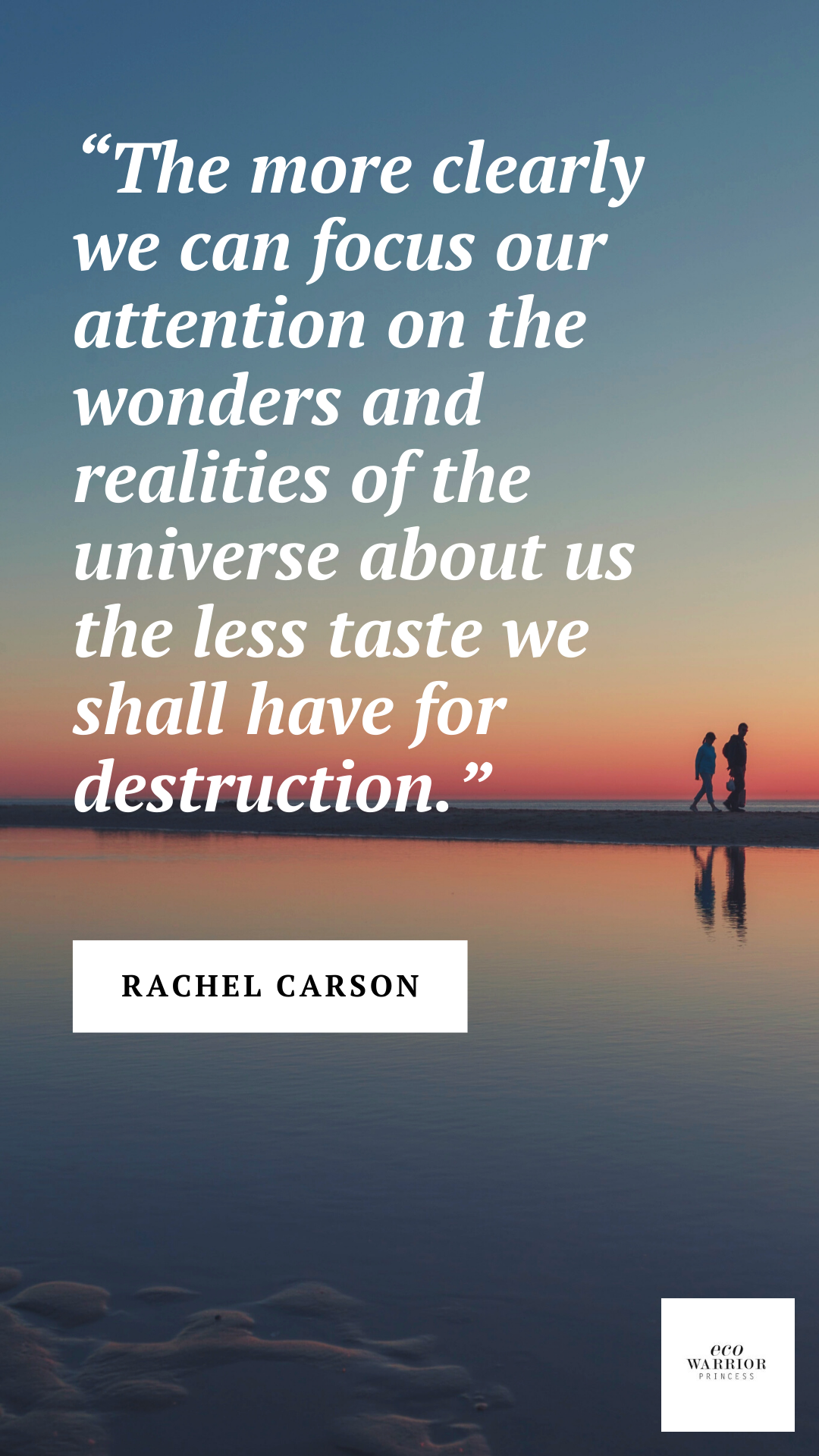 Environment quotes | Rachel Carson