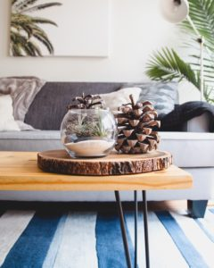 For City Dwellers: Quick Tips for Eco-Friendly Apartment Living