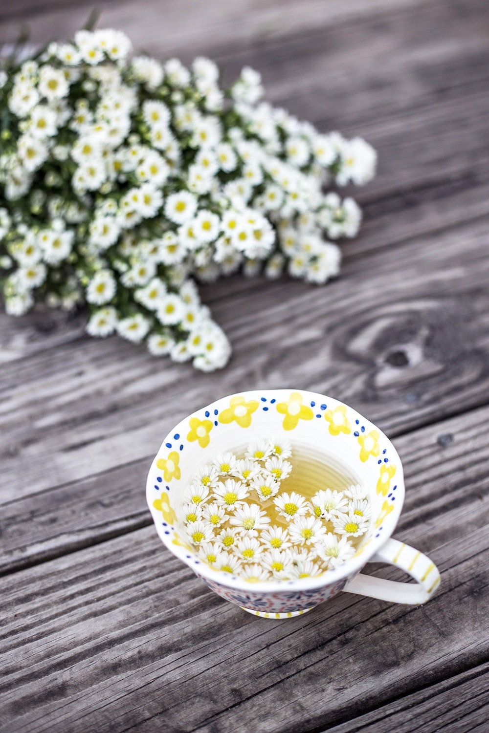 Chamomile -Edible Plant to Welcome Into Your Eco-Friendly Skincare Ritual