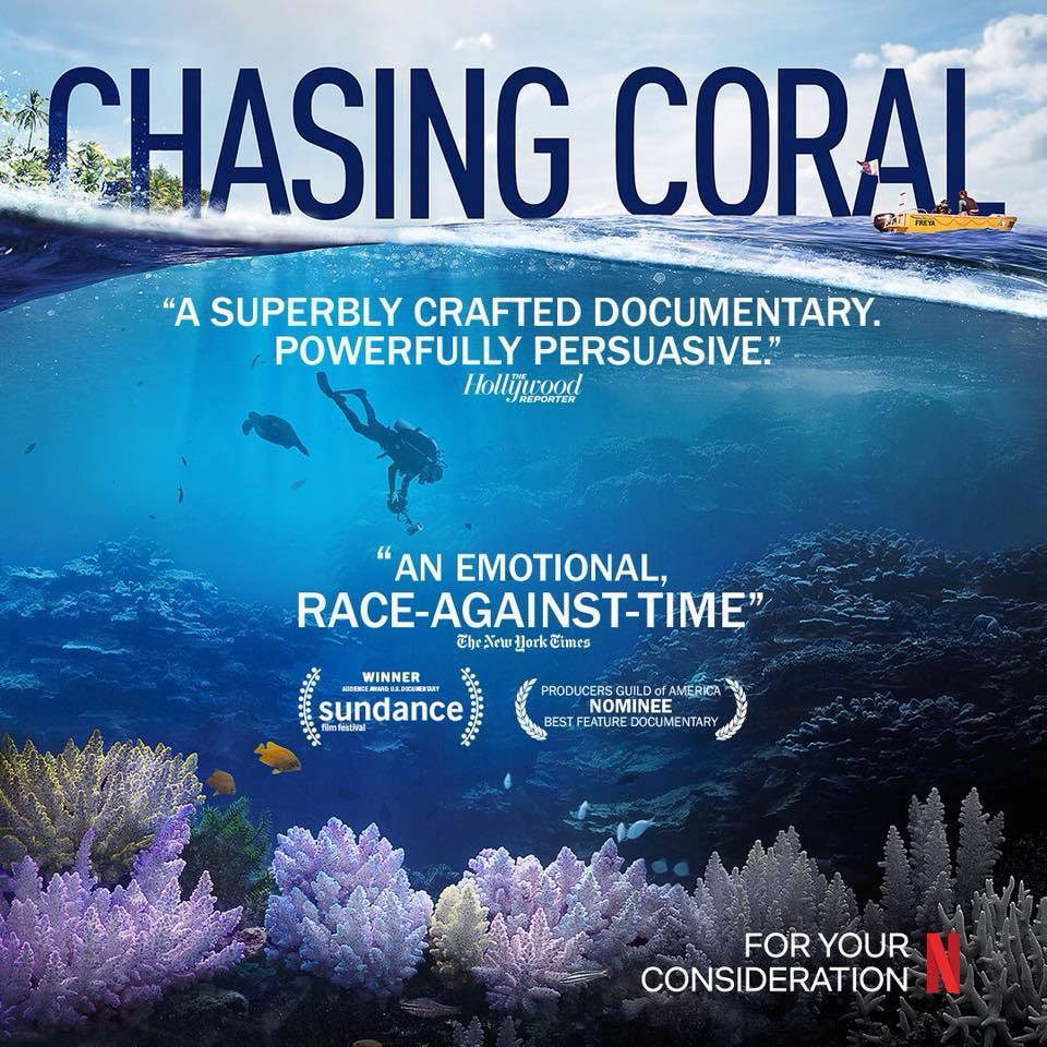 Nature and climate change films on netflix